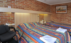 Windsor Terrace Motel - Twin Room