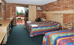 Windsor Terrace Motel - Twin Room with Terrace